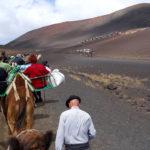 Andando de camelo